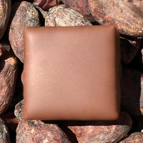 Praliné-lait-Gianduja - Chocolaterie du Blason