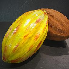 Cabosse cacao en chocolat - Chocolaterie du Blason
